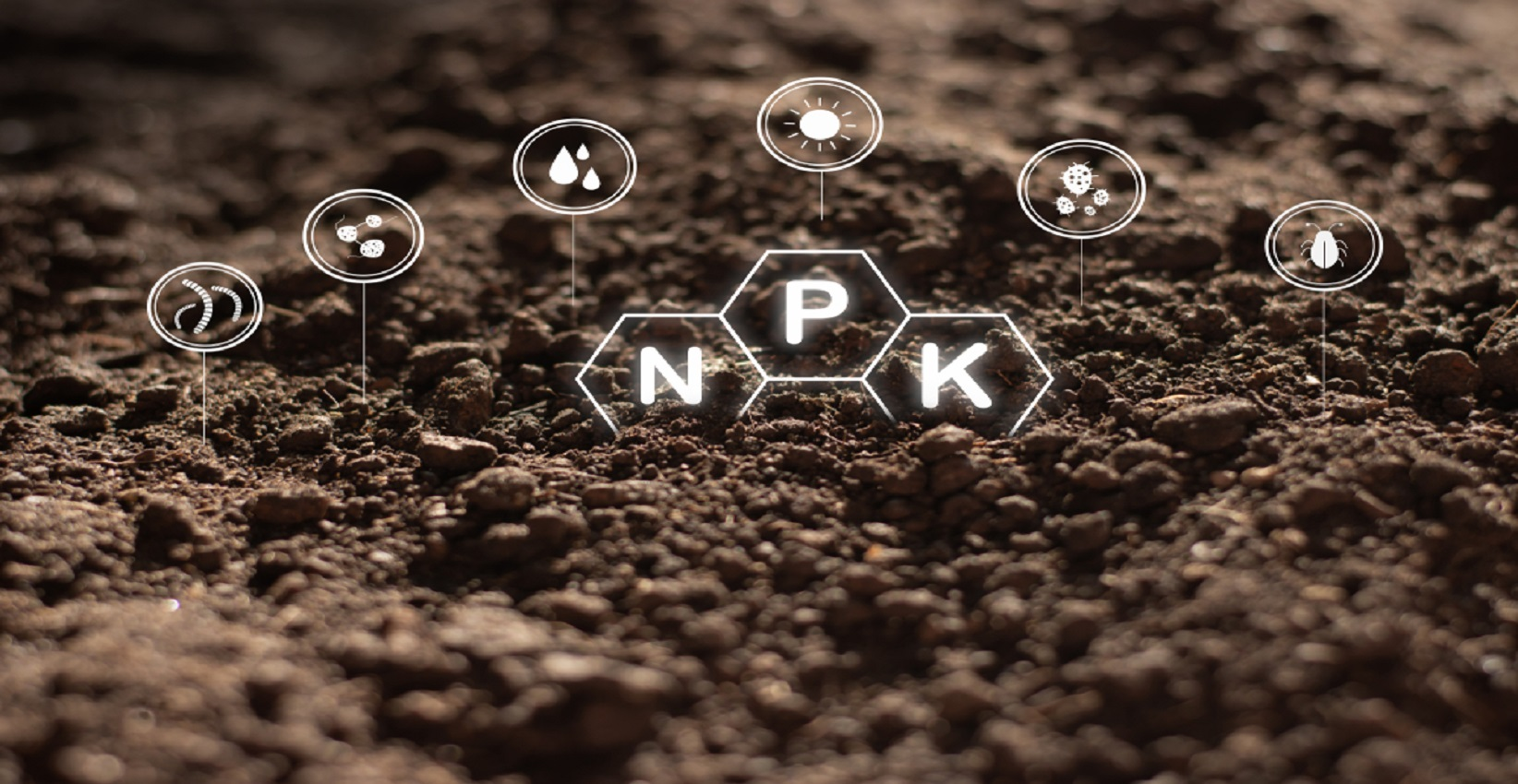 3.shutterstock_1531356470_ nutrient management