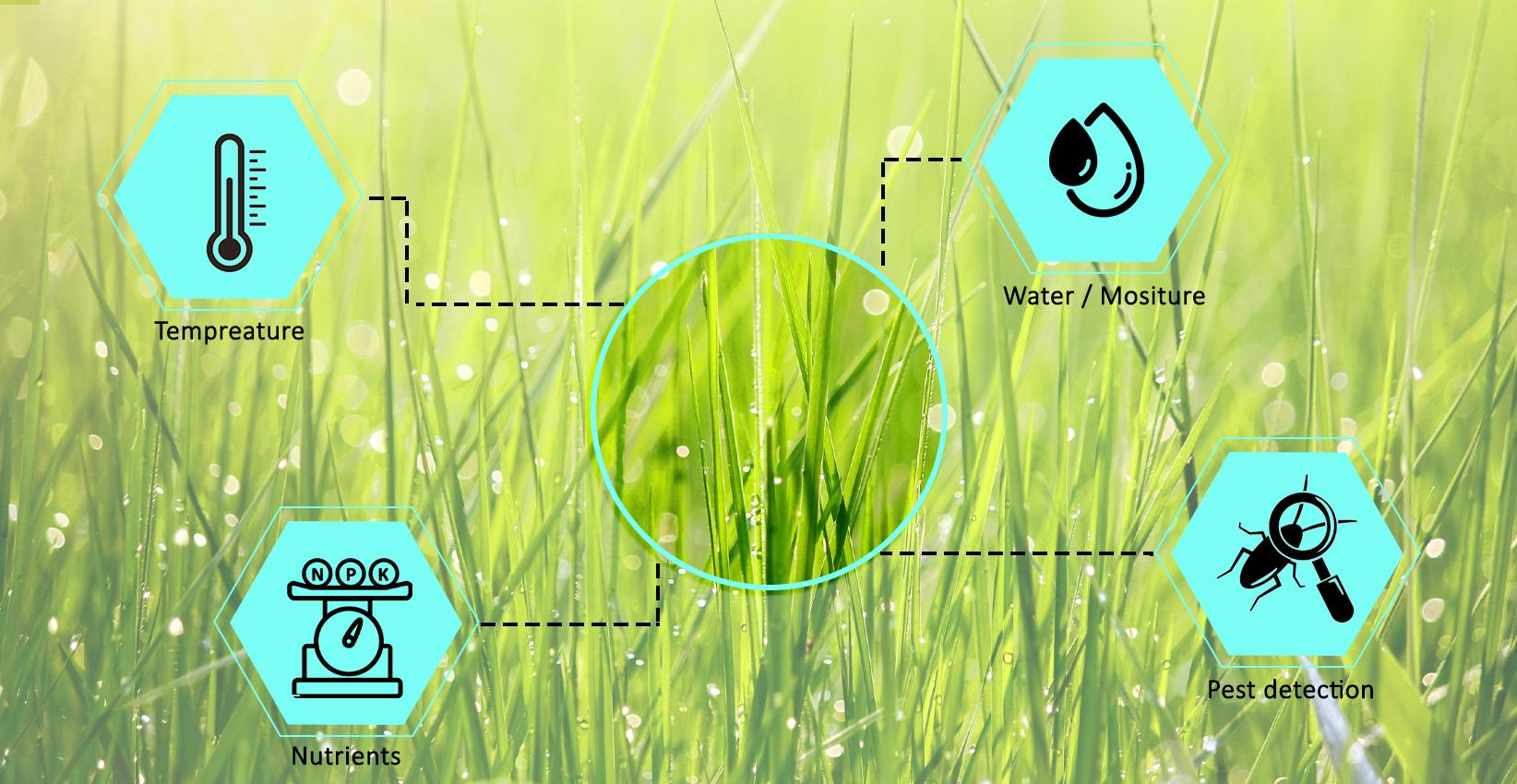 crop growth management