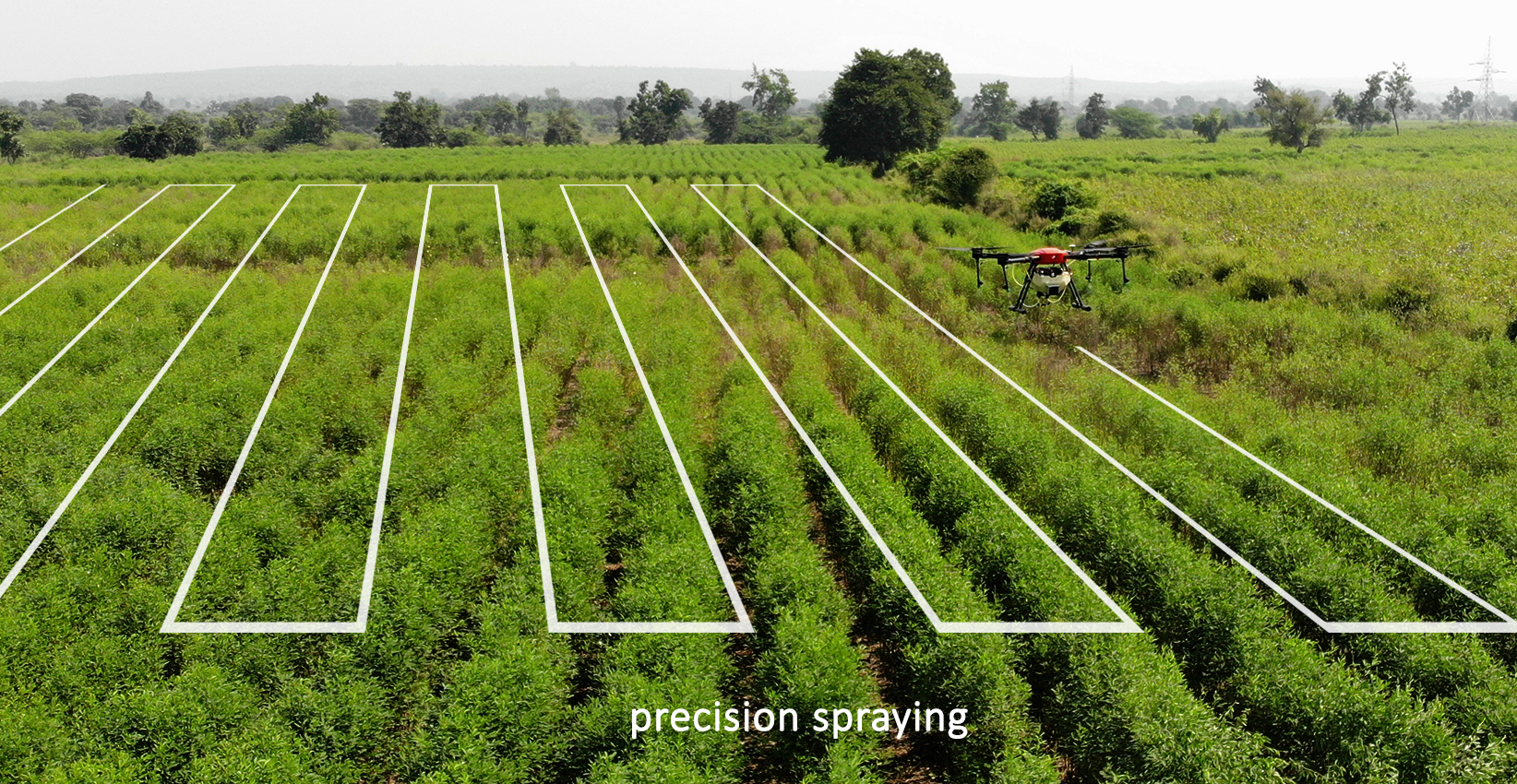 precision spraying